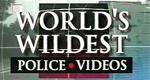 Im Einsatz - Die spektakulärsten Polizeivideos der Welt