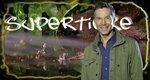 Supertiere – mit Dirk Steffens – Bild: ZDF/Rico Rossival