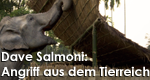 Dave Salmoni: Angriff aus dem Tierreich – Bild: DCI