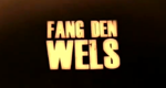 Fang den Wels! – Bild: Discovery Communications, LLC./Screenshot