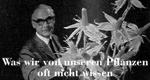 Was wir von unseren Pflanzen oft nicht wissen