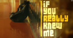 If You Really Knew Me – Bild: MTV