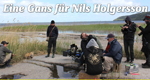Eine Gans für Nils Holgersson – Bild: NDR/Bremedia Produktion GmbH
