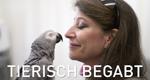 Tierisch begabt – Bild: Spiegel TV Wissen