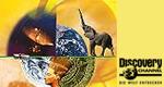 Discovery – Die Welt entdecken – Bild: ZDF