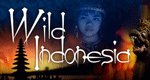 Wildes Indonesien – Bild: PBS