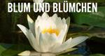 Blum und Blümchen – Bild: BR