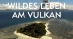 Wildes Leben am Vulkan – Bild: arte