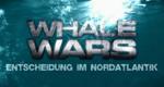 Whale Wars – Entscheidung im Nordatlantik – Bild: DMAX/Screenshot