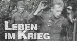 Leben im Krieg – Bild: Discovery Communications, Inc. (Screenshot)