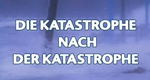 Die Katastrophe nach der Katastrophe – Bild: Discovery Communications, LLC. (Screenshot)