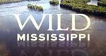 Der Mississippi – Amerikas Lebensader – Bild: National Geographic Channel (Screenshot)