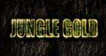 Die Schatzsucher: Goldjäger in Afrika – Bild: Discovery Communications, Inc.