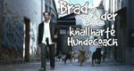 Brad – Der knallharte Hundecoach – Bild: Discovery Communications, Inc.
