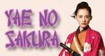 Yae no Sakura – Bild: NHK