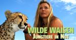 Wilde Waisen – Bild: Off the Fence