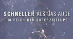 Schneller als das Auge – Bild: ZDF (Screenshot)