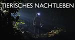 Tierisches Nachtleben – Bild: BBC