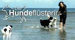 Die Hundeflüsterin – Bild: ZDF (Screenshot)