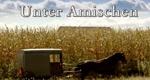 Unter Amischen – Bild: National Geographic Channel