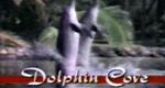 Das Geheimnis der Delphine