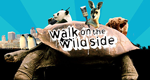 Walk on the Wild Side – Bild: BBC One
