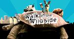 Walk on the Wild Side – Bild: BBC One