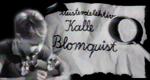 Meisterdetektiv Kalle Blomquist