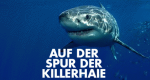 Auf der Spur der Killerhaie – Bild: National Geographic Channel