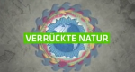 Verrückte Natur – Bild: ZDF