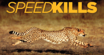 Tödliche Geschwindigkeit – Bild: National Geographic Channel
