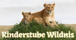 Kinderstube Wildnis – Bild: BBC