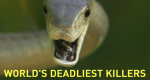World's Deadliest Killers – Bild: National Geographic Channel