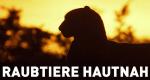 Raubtiere hautnah – Bild: National Geographic Channel