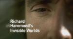Richard Hammonds unsichtbare Welten – Bild: BBC