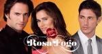 Rosa Fogo – Bild: SIC