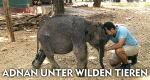 Adnan unter wilden Tieren – Bild: arte