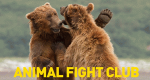 Animal Fight Club – Bild: National Geographic Channel
