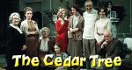 The Cedar Tree – Bild: ATV