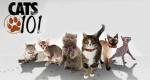 Das große Katzen-ABC – Bild: Discovery Communications, LLC.