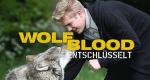 Wolfblood entschlüsselt – Bild: ZDF Enterprises
