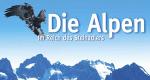 Im Reich des Steinadlers – Bild: Polyband/WVG