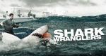 Shark Wranglers – Bild: A&E Television Networks, LLC.