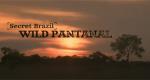 Schätze Brasiliens – Das Pantanal – Bild: Nat Geo Wild