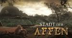 Stadt der Affen – Bild: Discovery Networks