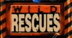 Rettung aus höchster Not – Bild: Discovery Communications, LLC./Screenshot
