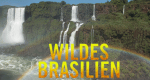 Wildes Brasilien – Bild: TerraMater Light & Shadow/Christian Baumeister