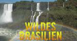 Wildes Brasilien – Bild: TerraMater Light & Shadow/Christian Baumeister