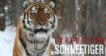 Expedition Schneetiger – Bild: GEO Television/BBC