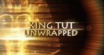 Tutanchamun – Bild: Discovery Channel